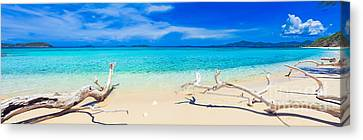 Tropical Beach Malcapuya Canvas Print