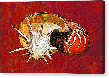 Seaweed Canvas Print - Underwater. Sea Shells. by Elena Kosvincheva