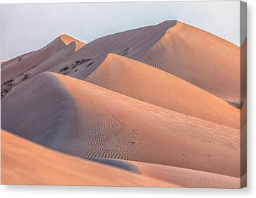 Wahiba Sands - Oman Canvas Print by Joana Kruse