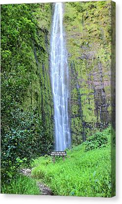 400 Foot Waimoku Falls Maui Canvas Print by Pierre Leclerc Photography