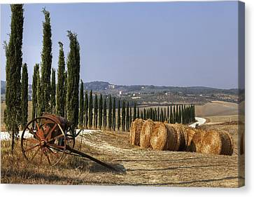 Tuscany Canvas Print by Joana Kruse