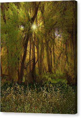 Canvas Print featuring the photograph 4368 by Peter Holme III