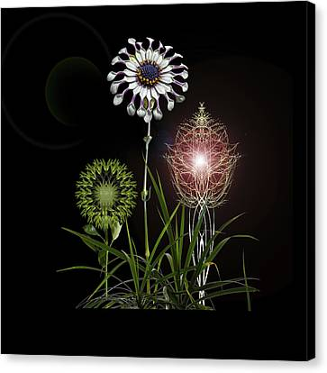 Canvas Print featuring the photograph 4369 by Peter Holme III