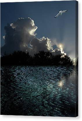 Canvas Print featuring the photograph 4377 by Peter Holme III
