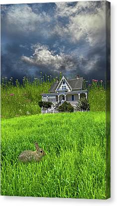 Canvas Print featuring the photograph 4379 by Peter Holme III