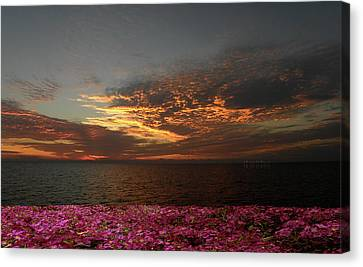 Canvas Print featuring the photograph 4380 by Peter Holme III