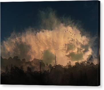 Canvas Print featuring the photograph 4382 by Peter Holme III