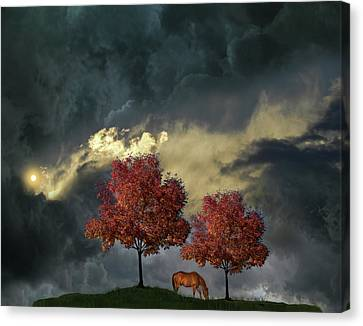 Canvas Print featuring the photograph 4384 by Peter Holme III