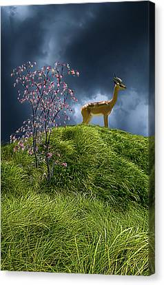 Canvas Print featuring the photograph 4388 by Peter Holme III