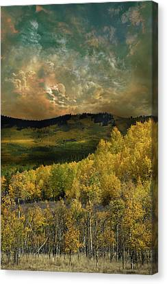 Canvas Print featuring the photograph 4394 by Peter Holme III