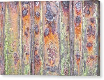 Rusty Metal Canvas Print by Tom Gowanlock