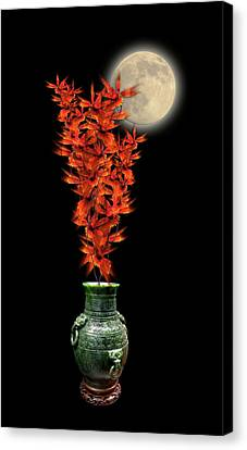 Canvas Print featuring the photograph 4406 by Peter Holme III