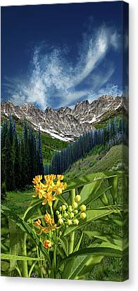 Canvas Print featuring the photograph 4415 by Peter Holme III