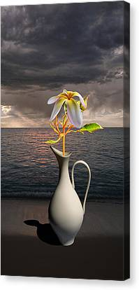Canvas Print featuring the photograph 4416 by Peter Holme III