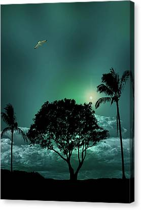 Canvas Print featuring the photograph 4420 by Peter Holme III