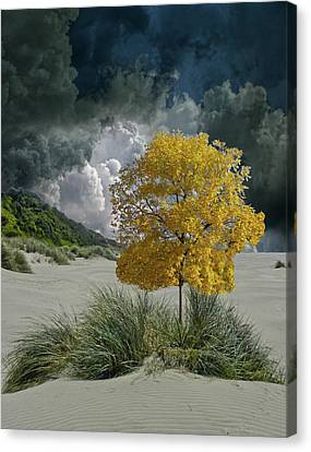 Canvas Print featuring the photograph 4422 by Peter Holme III