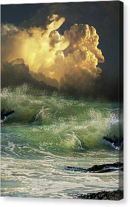 Canvas Print featuring the photograph 4449 by Peter Holme III