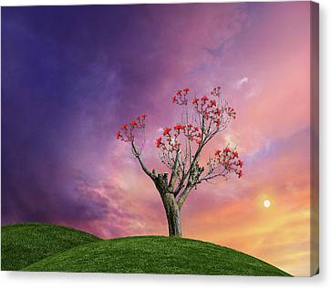 Canvas Print featuring the photograph 4451 by Peter Holme III