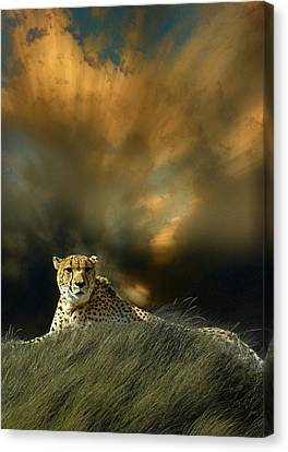 Canvas Print featuring the photograph 4452 by Peter Holme III