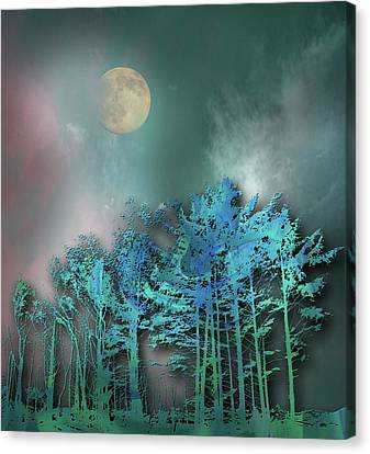Canvas Print featuring the photograph 4480 by Peter Holme III