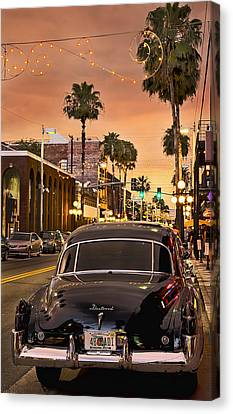 48 Cadi Canvas Print by Steven Sparks