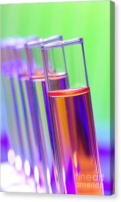 Test Tubes In Science Research Lab Canvas Print