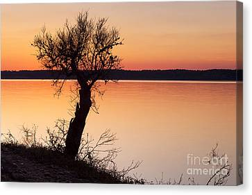Alqueva Dam Canvas Print by Andre Goncalves
