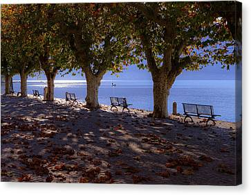 Autumn Leaf Canvas Print - Ascona - Lake Maggiore by Joana Kruse