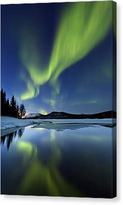 Astronomy Canvas Print - Aurora Borealis Over Sandvannet Lake by Arild Heitmann