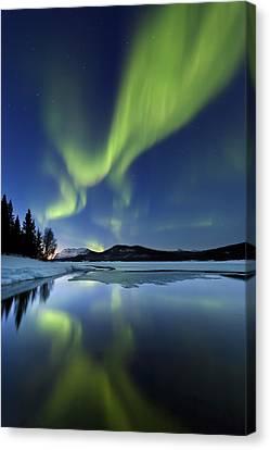 Aurora Borealis Over Sandvannet Lake Canvas Print by Arild Heitmann
