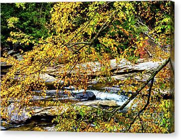 Autumn Middle Fork River Canvas Print