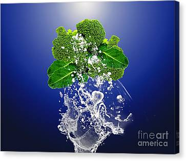 Produce Canvas Print - Broccoli Splash by Marvin Blaine