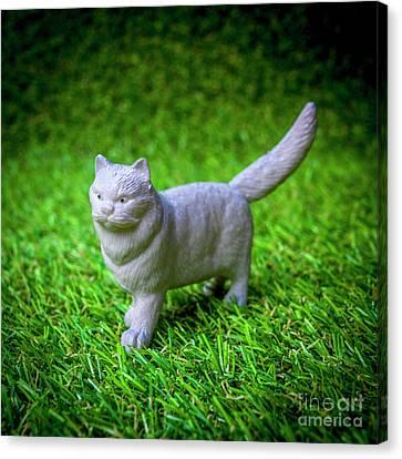 Toy Animals Canvas Print - Cat Figurine by Bernard Jaubert