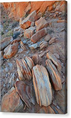 Canvas Print featuring the photograph Colorful Cove In Valley Of Fire by Ray Mathis
