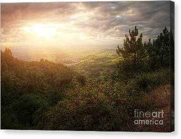 Countryside Landscape Canvas Print