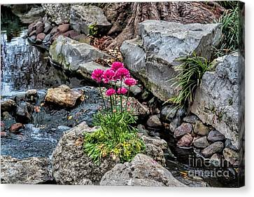 Canvas Print featuring the photograph Dallas Arboretum by Diana Mary Sharpton