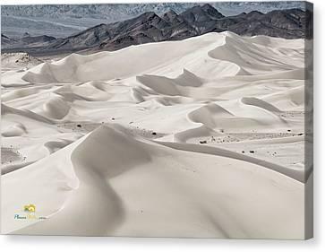 Dumont Dunes 5 Canvas Print