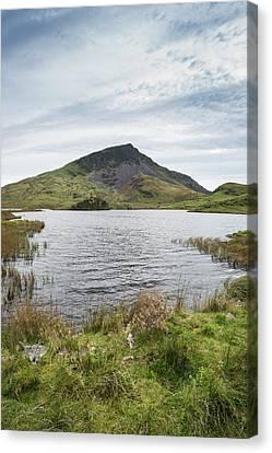 Llyn Y Dywarchen Canvas Print - Evening Landscape Image Of Llyn Y Dywarchen Lake In Autumn In Sn by Matthew Gibson