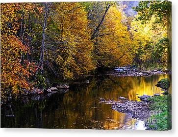Fall Color Gauley River Headwaters Canvas Print