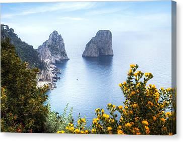 Faraglioni - Capri Canvas Print by Joana Kruse