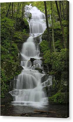 Forest Waterfall Canvas Print by Stephen  Vecchiotti
