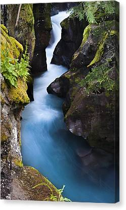 Canvas Print featuring the photograph Glacier National Park 100th Anniversery by Kevin Blackburn