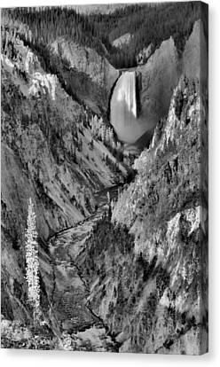Lower Yellowstone Falls Canvas Print by Stephen  Vecchiotti