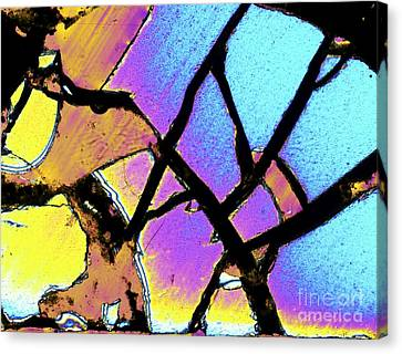 Meteor Jepara, Thin Section, Micrograph Canvas Print