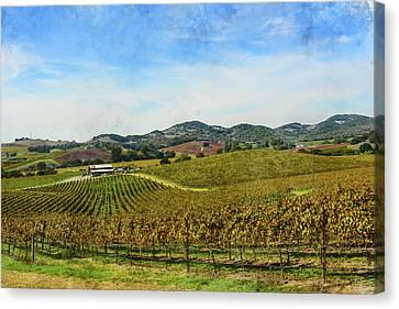 Napa Valley California Vineyard Canvas Print by Brandon Bourdages