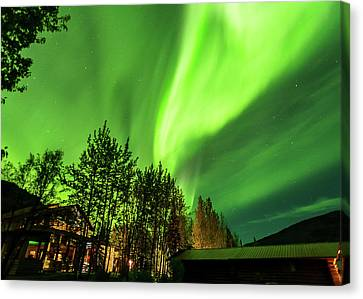 Northern Lights, Aurora Borealis At Kantishna Lodge In Denali National Park Canvas Print