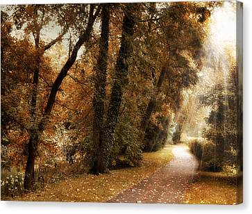 Country Lanes Canvas Print - October Trail by Jessica Jenney
