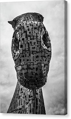 Standing Tall. Canvas Print by Angela Aird