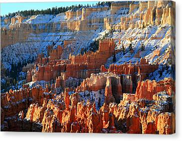Thor Canvas Print - Sunset Point In Bryce Canyon by Pierre Leclerc Photography