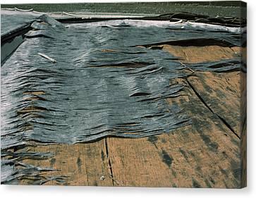 Texture Canvas Print by Ric Aldrich